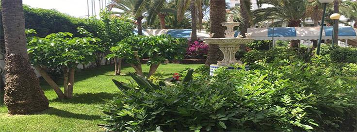 mantenimiento de jardines para empresas y particulares